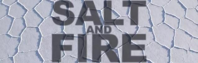 4. salt and fire