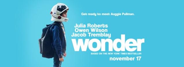 3. Wonder
